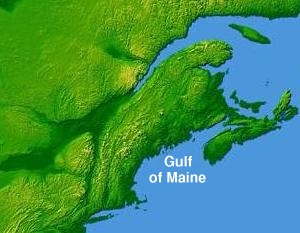 wpdms_nasa_topo_gulf_of_maine